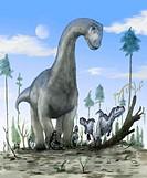 Camarasaurus trampling baby ceratosaurs, artwork. Camarasaurus was a large 23 metre long sauropod dinosaur that lived during the Late Jurassic 160_145...