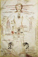 Zodiacal man. 15th_century manuscript page showing a human figure labelled with the signs of the zodiac corresponding to parts of the body. This is an...