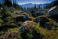 Kokanee Glacier Provincial Park, Canada.