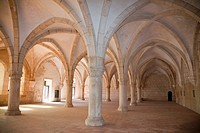 The Monastery of Santa Maria de Alcobaca was founded in 1153 by the Afonso Henriques. It was one of the most powerful abbeys of the Cistercian order. ...