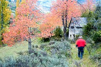 Typical 'txabola' in Autumn in gistain valley,pyrenees,huesca province,aragon,spain