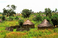 Africa, Cameroon, huts