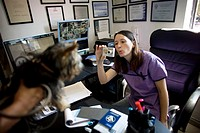 A veterinarian whistles to get the dog to look at her as she photographs it at a Pet Hospital in Condesa, Mexico City, Mexico, February 22, 2011