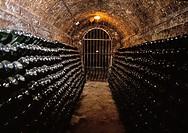Freixenet Cava Cellar  Sant sadurní D´anoia Barcelona Spain
