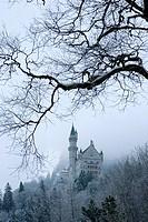 Neuschwanstein Castle, Schloss Neuschwanstein, from Hohenschwangau village, Schwangau, Ostallgau, Bavaria, Germany, Winter.