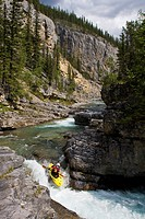 A male kayaker drops a small falls on the Fiddle River, Jasper National Park, Alberta, Canada