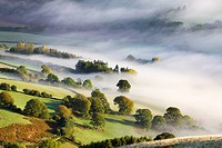 Mist covered rolling countryside in the Usk Valley, Brecon Beacons National Park, Powys, Wales, United Kingdom, Europe