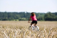 A woman riding a bike in the countryside, Sweden.