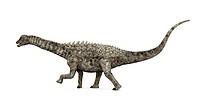 Dinosaurier Ampelosaurus