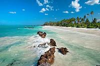 Matemwe beach  Zanzibar Island  Tanzania.
