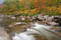 Swift, River, in, autumn, White, Mountain, national, forest, White, Mountains, New, Hampshire, USA, Indian, Summer,