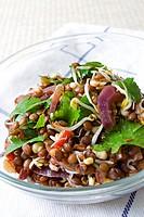 Linsensalat _ Lentil Salad