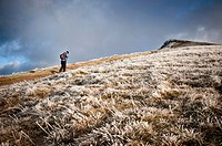 Hiker walks on Beacons Way towards Corn Du, Brecon Beacons national park, Wales