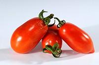 Tomatoes, ´Taubenherz´, Solanum, lycopersicum,