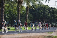 Photograph of a group of bicycle riders in the Yarkon Park _ the green lungs of the city of Tel Aviv