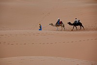 Photograph of travelers riding camels on the dunes of Mezouga in Morocco