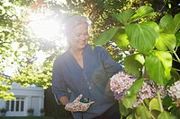 Senior woman pruning flowering bush