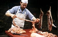 Butchering a pig: separating the small intestine