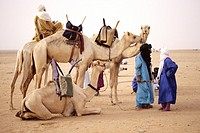 In-Gall, near Agadez, Niger - Tuaregs in Desert Conversation