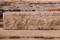 Neolithic Bull carvings on a stone in Tarxien Temple, Malta