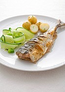 Mackerel with cucumbers and potatoes on plate, close_up