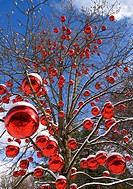 Austria, Salzburg, View of tree decorated with christmas balls