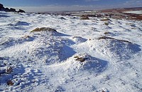 Snow covered landscape, Haytor, Dartmoor National Park, England