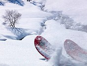Italy, Piedmont, Ski tips in snowy meadow