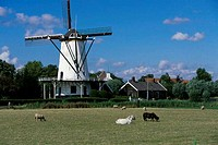 Yerseke Netherlands