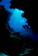 Low angle view of two scuba divers swimming underwater