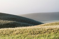Landscape and morning mist in Grasslands National Park Saskatchewan, Canada