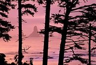 Dawn at Third Beach, Olympic National Park, WA