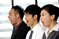 Business executives shouting in a row