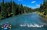 Rafting in Maligne River Jasper National Park  Alberta  Canada