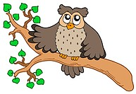 Owl on branch _ isolated illustration.
