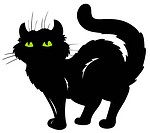 Standing cat silhouette _ isolated illustration.