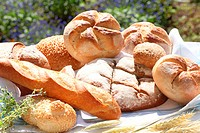 Different sorts of bread in garden
