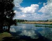 Myakka River State Park Florida USA