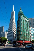 Buildings in a city, Transamerica Pyramid, Columbus Tower, San Francisco, California, USA