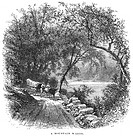 NORTH CAROLINA, 1875.A mountain wagon in the North Carolina mountains. Line engraving, 1875.