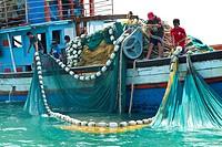 Fishing  Krabi coast  Krabi province, Andaman Sea, Thailand, Asia.