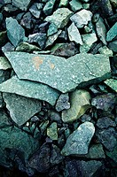 Green granite and shale rocks on a rugged Antarctic island shore.