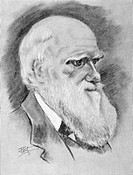 CHARLES ROBERT DARWIN(1809-1882). English naturalist. Charcoal drawing, 19th century.