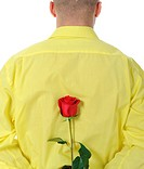 man in a yellow shirt holding a red rose