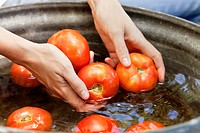 Close_up of a woman's hand washing tomatoes