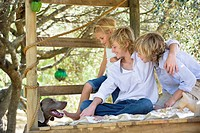 Children looking at a dog from tree house