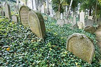 Jewish cemetery in Trebic, World Cultural and Natural Heritage of UNESCO, Moravia, Czech Republic