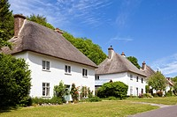 Row of detached thatched cottages, Milton Abbas, Dorset, England, UK