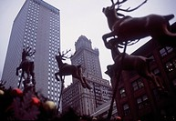 City Shape with Reindeers _ Chicago _ Illinois _ USA