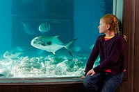 Girl watching fish in aquarium
